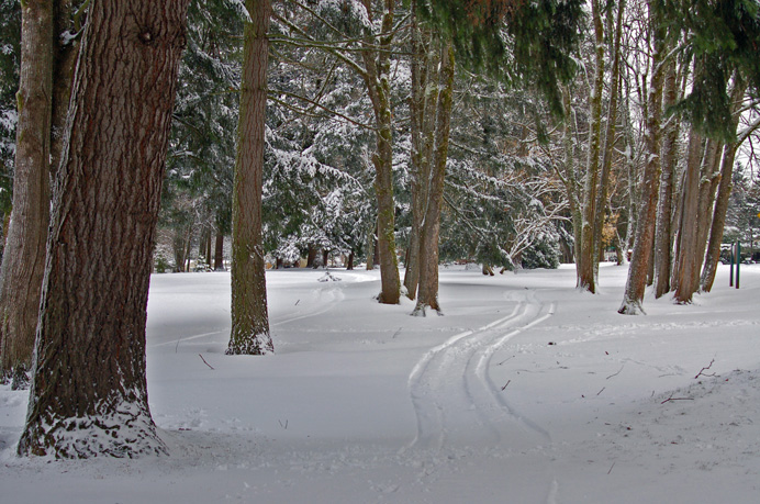 Winter comes to Columbia View Park: Wilkes East Neighborhood, Gresham Oregon. 2008 Lee Dayfield Photography