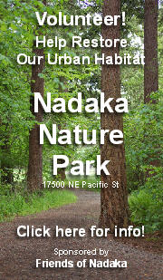 Volunteer! Help restore our urban habitat at Nadaka Nature Park.  Click here for more info!