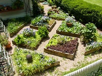 Free Workshop, Creating an Edible Landscape: Sat, May 18, 2019 9AM-11:30AM. Info here!