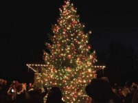 Join the fun! Celebrate The Spirit of Christmas: Sat Nov 28, 2013 5PM-6:30PM. 24th Annual Spirit of Christmas tree lighting rings in Gresham's holiday season with a family-friendly program that includes music, photos with Santa, refreshments and more! Info here!