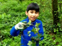 No Ivy Day Cleanup at Nadaka Nature Park: Sat, Oct 28, 2017 9AM-12PM. Get Your Green On!. Info here!