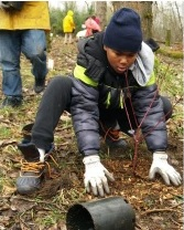 Neighborhood Wide and Nadaka Tree Planting: Sat, Apr 13, 2019 9AM-1PM. Get Your Green On!. Info here!