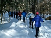 Senior Healthy Hikers: Mt. Hood Meadows Snowshoe Hike: Tue Feb 24, 2015 9AM-5PM. Info here!
