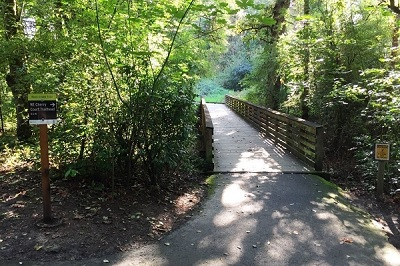 City of Gresham Senior Healthy Hikers, Rock Creek Trail Hike - Cherry Lane Trailhead to Rock Creek Park: Wed, Jan 15, 2020 9AM-5PM. Let's Go Walking! Info here!