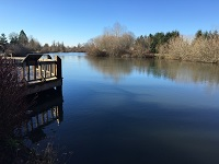 City of Gresham Senior Healthy Hikers, Commonwealth Lake Walk: Wed, Feb 21, 2018 9AM-5PM. Let's Go Walking! Info here!