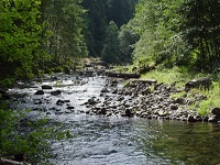 Senior Healthy Hikers: Old Salmon River Trail Hike: Tue May 24, 2016 9AM-5PM. Get involved, make a difference. Info here!