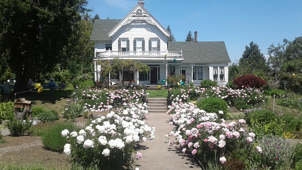 Zimmerman Heritage Farm. A delightful Victorian era farmhouse built in 1874. Holiday Tours Hours: Dec 01-02, 08-09, 15-16, 2017 12PM-5PM. Gresham OR. Fairview-Rockwood-Wilkes Historical Society. Info here!